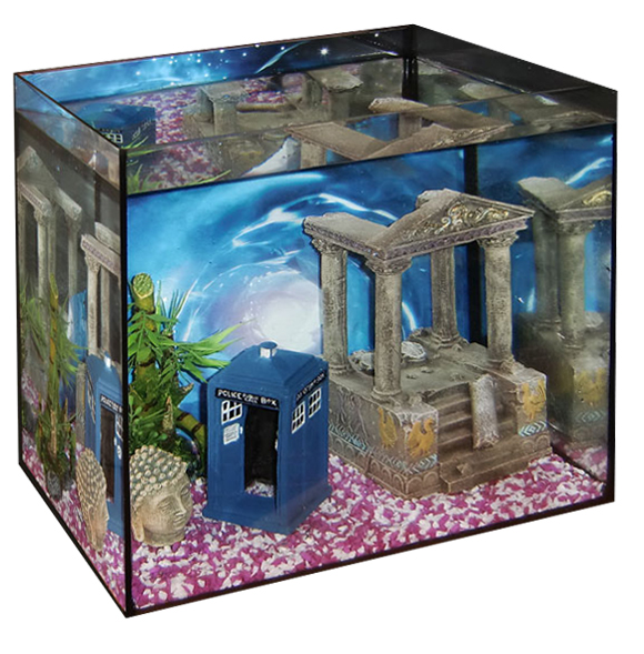 Cool fish tanks on sale uk cool fish tanks for sale for Cool small fish tanks